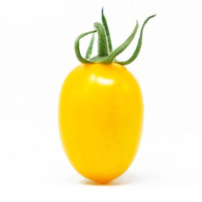 datterino-giallo-sing