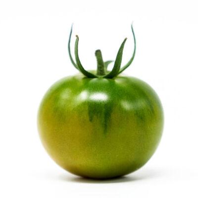 verde-sing